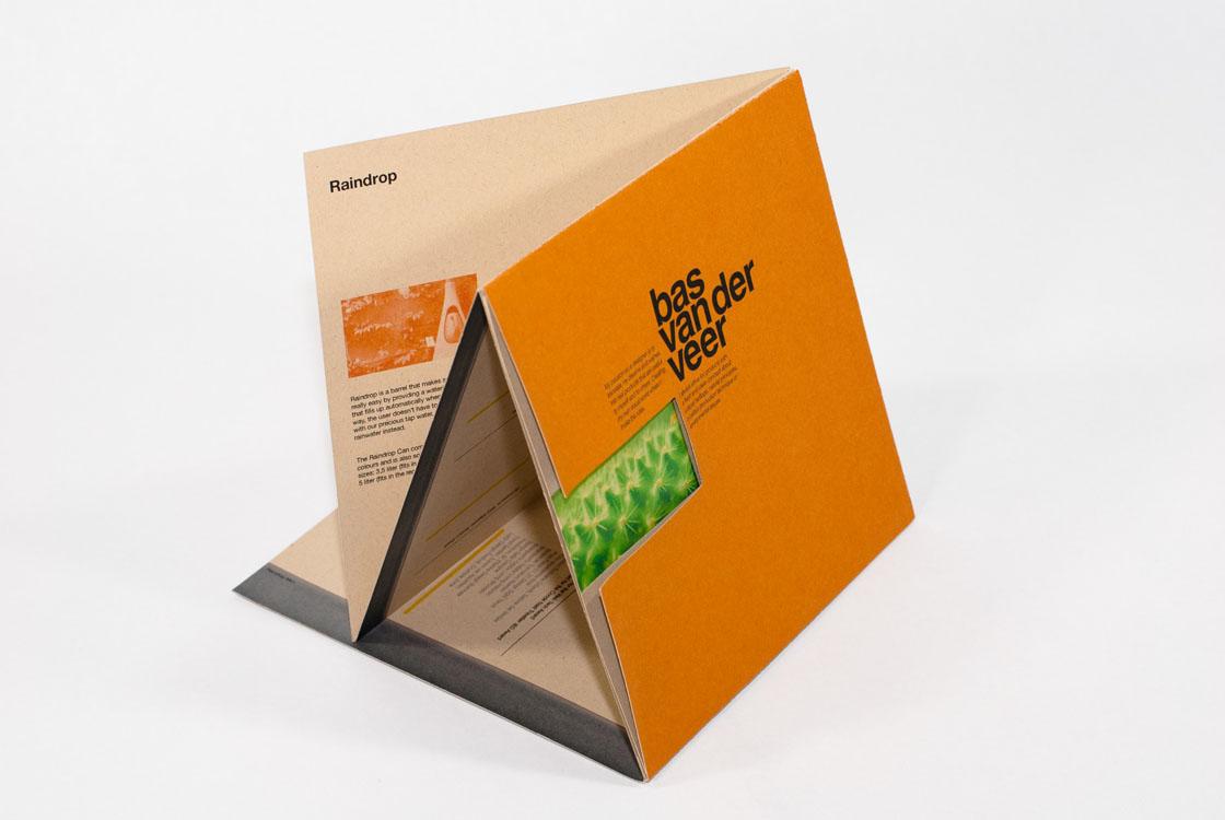 Bas Van Der Veer - Promotional package